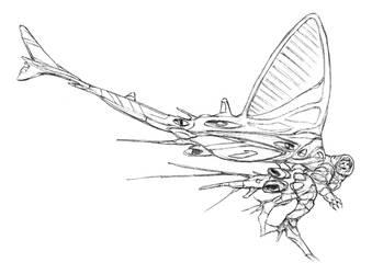Mayfly by thomastapir