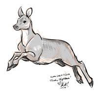 Roe Deer Doe Sketch by KatCardy