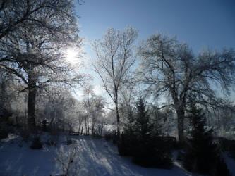 Winterscape by punkandartStJimmy