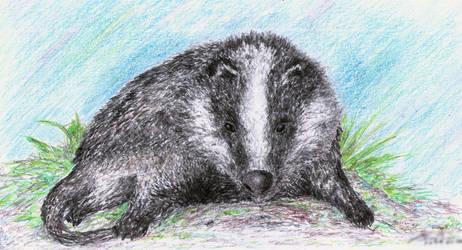 Badger by punkandartStJimmy