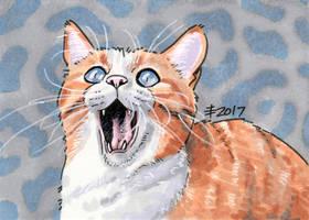 2017 Christmas Presents - Reece Cat by AnimeGirlMika