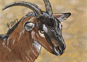 Birthdays December 2017 - Have A Goat by AnimeGirlMika
