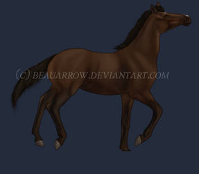 Bay Thoroughbred by BeauArrow