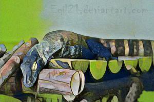 Animalia_Dragao-de-Komodo by Egil21