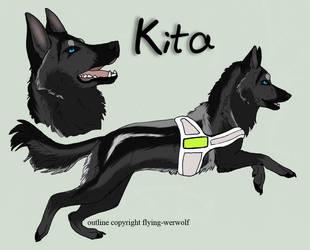 Reference Kita by KatyushkaWolf