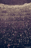 Autumn Teardrops by AlexAidonidis
