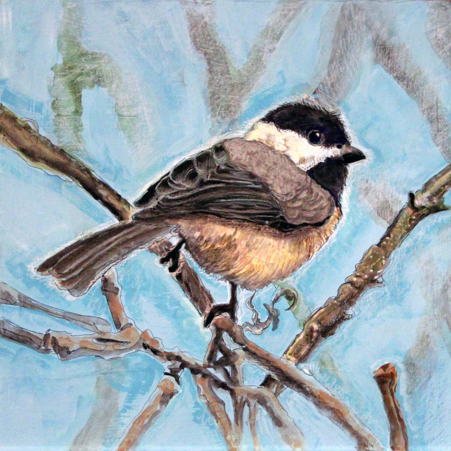 Chickadee by Tomolan