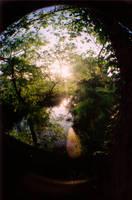 Morning Through a Fisheye by Erikonil