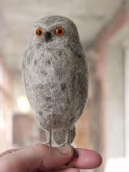 owl by vriad-lee