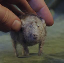 pig grey 2 by vriad-lee