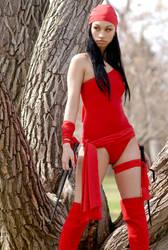 Vanessa Elektra 5a by jagged-eye