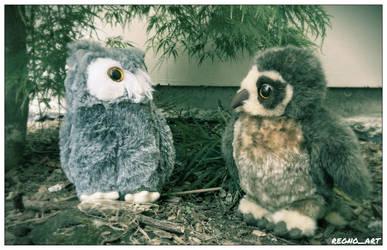 Wyatt and Hedwig by regnoart