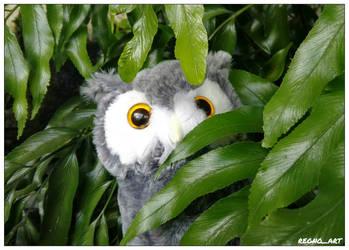 Hedwig the Snowy Owl by regnoart