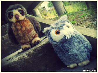 Wyatt and Hedwig 4 by regnoart