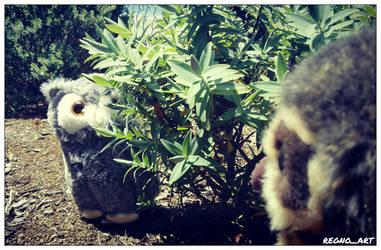 Wyatt and Hedwig 5 by regnoart