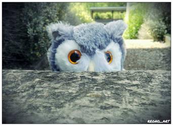 Hedwig the Snowy Owl 3 by regnoart