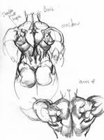 anatomy: back2 by Jebriodo