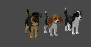 DOGS by Oo-FiL-oO