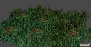 FIELD OF FLOWERS by Oo-FiL-oO