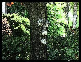 Talking Tree by OsarionStudios