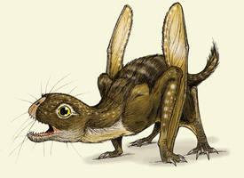 Anurognathus by Eurwentala