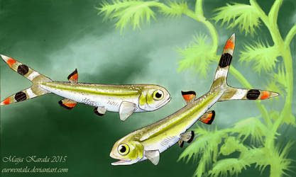 Yixian Fish by Eurwentala