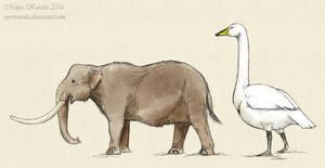 The Smallest Elephant by Eurwentala