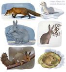Winter Mammals by Eurwentala