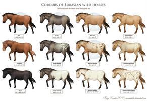 Wild Horses by Eurwentala