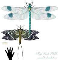 Big Bugs by Eurwentala