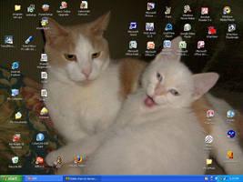 My desktop woo by Eddie-chan