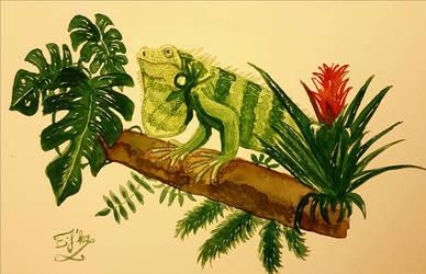 Iguana by Eif-ka