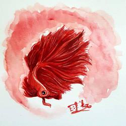 Red Betta fish by Eif-ka