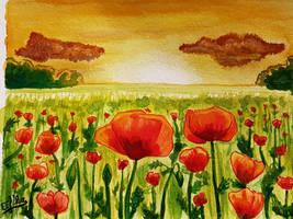 Poppy field by Eif-ka