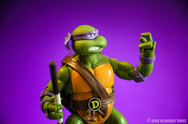 Donatello - Teenage Mutant Ninja Turtles by torreoso
