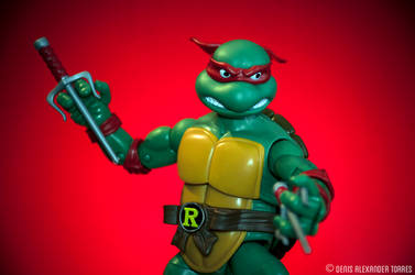 Raphael - Teenage Mutant Ninja Turtles by torreoso