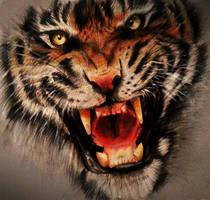 Roar by Kinemesi
