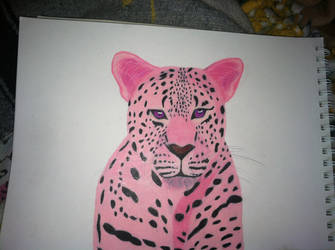 Pink  leopard for Balyse by tigerstar44