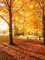 Kaliningrad Autumn by RealityOne