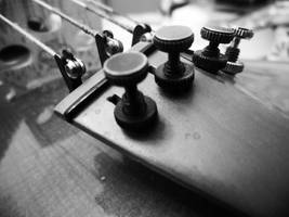 Pegs and Strings by Too-many-of-us