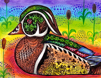 Rainbow Wood Duck by HGCreations