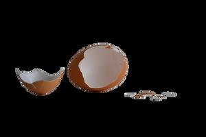 Egg Stock by FrankAndCarySTOCK