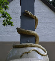 Snake by FrankAndCarySTOCK
