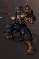 Master Ryu by jpzilla