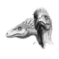 Utahraptor ostrommaysorum by TopGon