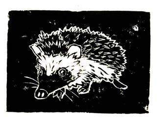 Hedgehog by Milana87