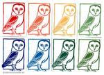 Barn owl - postcards by Milana87