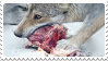 wolf + meat stamp by bulletblend
