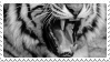 tiger teeth stamp by bulletblend