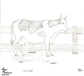 Cow by SakuraGraciano